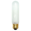 This item: Frost T10, E26 2700K Incandescent Bulb, Pack of 25