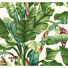 This item: Ashford House Tropics White and Teal Green Banana Leaf Wallpaper: Sample Swatch Only