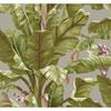 This item: Ashford House Tropics Grey and Green Banana Leaf Wallpaper