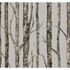 This item: Ronald Redding Urban Grey The Birches Wallpaper