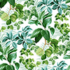 This item: Rainforest Green Leaves Peel and Stick Wallpaper