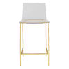 This item: Aspen Clear and Matte Brushed Gold Counter Stool, Set of 2