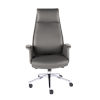 This item: Ilaria Gray 29-Inch High Back Office Chair