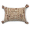 This item: Multicolor 16In. x 26In. Pillow Cover with Poly Fill