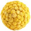 This item: Sia Yellow Medium Filler