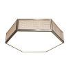 This item: Clara Satin Nickel LED Flush Mount