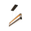 This item: Echo Black 45-Inch LED Pendant