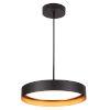 This item: Reveal Black LED Pendant