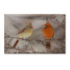 This item: LED Lighted Cardinal Canvas