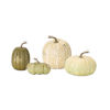 This item: Green and White Pumpkin, Set of 4