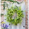 This item: Oversized Mixed Foliage Wreath