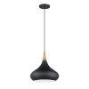 This item: Medina Black and Brass One-Light Pendant