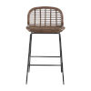 This item: Jake Matte Gray and Rattan 25-Inch Counter Stool