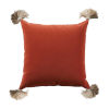 This item: Terra Cotta Velvet and Almond 20 x 20 Inch Pillow with Tassel