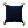 This item: Navy Velvet and Almond 20 x 20 Inch Pillow With Tassel