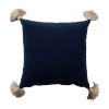 This item: Navy Velvet and Almond 22 x 22 Inch Pillow With Tassel