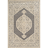 This item: Aesop Grey and Beige Rectangular: 5 Ft. 2 In. x 7 Ft. 3 In. Rug