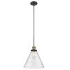 This item: X-Large Cone Black Antique Brass LED Hang Straight Swivel Pendant with Seedy Glass