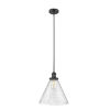 This item: X-Large Cone Matte Black LED Hang Straight Swivel Pendant with Seedy Glass