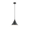 This item: Briarcliff Matte Black One-Light Hang Straight Swivel Pendant