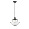 This item: Oxford School House Oiled Rubbed Bronze 11-Inch LED Pendant with Seedy Bell Glass