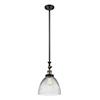 This item: Seneca Falls Black Antique Brass LED Mini Pendant with Clear Dome Glass