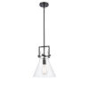 This item: Newton Matte Black 14-Inch One-Light Pendant