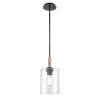 This item: Paladin Matte Black One-Light Mini Pendant