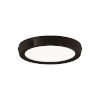 This item: Argo Black 7-Inch LED Flush Mount