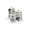 This item: Silver 6-Inch Plume Canisters, Set of 3
