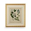 This item: Gold Cottage Florals I Print