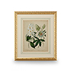 This item: Gold Cottage Florals II Print