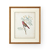 This item: Gold Delicate Birds II Print