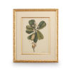 This item: Gold Catesby Bird and Botanical III Wall Art