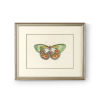 This item: Antique Silver Butterfly IV Wall Art