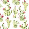 This item: Cactus Wallpaper