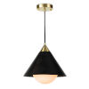 This item: Hilton Blackened Brass and Natural BrassOne-Light Pendant