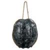 This item: Turtle Ebony Decorative Object