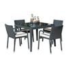 This item: Onyx Black Outdoor Dining Set with Sunbrella Canvas Vellum cushion, 5 Piece
