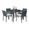 This item: Onyx Black Outdoor Dining Set with Sunbrella Glacier cushion, 5 Piece