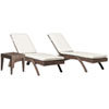 This item: Oasis Java Brown Outdoor Chaise Lounge with Sunbrella Passage Poppy cushion, 3 Piece