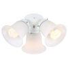 This item: White Three-Light LED Ceiling Fan Light Kit