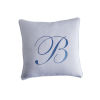This item: Upholstery White 20-Inch Signature Throw Pillow