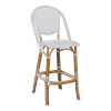 This item: Sofie White and Cappuccino Bar Stool