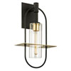 This item: Castile Dark Bronze and Brushed Brass 22-Inch One-Light Outdoor Wall Sconce