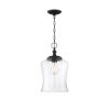 This item: Nora Matte Black One-Light Mini Pendant