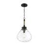 This item: Finn Matte Black One-Light Pendant
