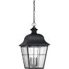 This item: Bryant Black Three-Light Outdoor Pendant with Clear Seedy Glass