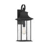 This item: Elle Black One-Light Outdoor Wall Sconce