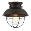 This item: River Station Rubbed Bronze One-Light Industrial Lantern Flush Mount